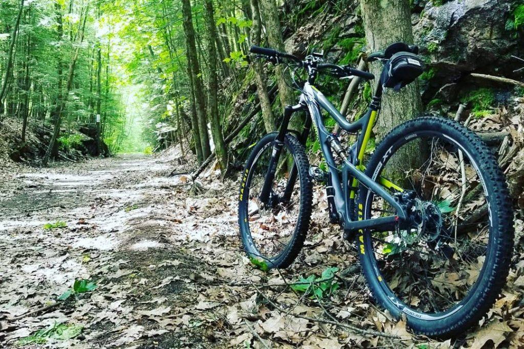 Bike on a wooded trail